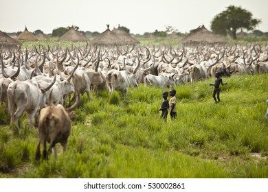 LILIIR, SOUTH SUDAN-JUNE 24, 2012: Children watch as a huge herd of cattle go past their village in South Sudan