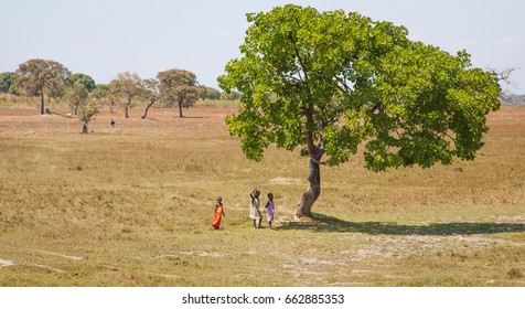 LILONGWE, MALAWI - SEPTEMBER 05 2009: In a small village near Lilongwe, a group of Malawian children gather under a tree. Malawi is a poor country, with a large part of the population wearing rags.