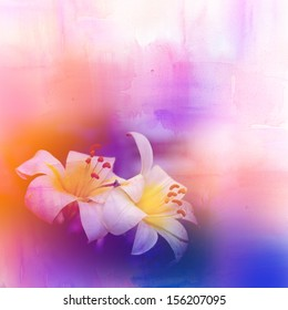 Lily flower over colorful background. Spring or summer floral background.