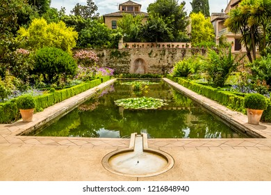 Lily ponds glisten in the summer sun in the Alhambra district, Granada