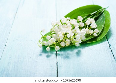 lily of the valley flowers bunch on blue painted wood table background