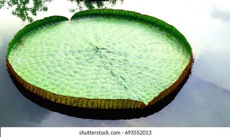 LilyPad Heart Figure