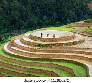 LIM MONG, VIETNAM - JULY 12, 2018: Rice fields on terraced. Fields are prepared for planting rice. Huyen Mu Chang Chai. Mam Xoi Viewpoint, Northen Vietnam