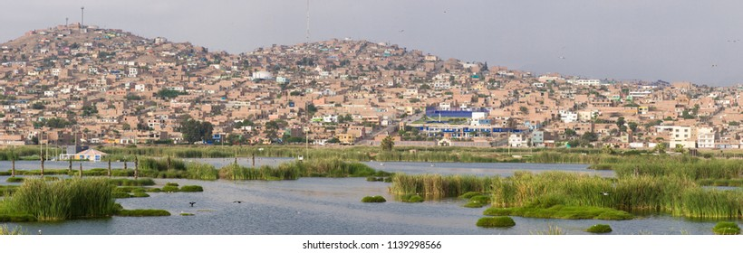 LIMA, PERU: Wetlands of Villa, In chorrillos district.