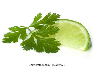 Lime and cilantro or coriander isolated on white.