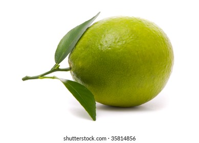 Lime with fresh leaves. Macro shot. Studio white background.