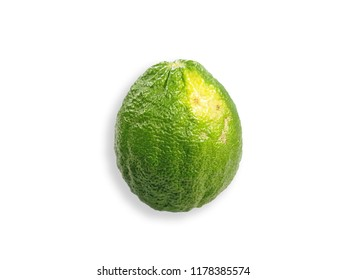 Lime green with white background