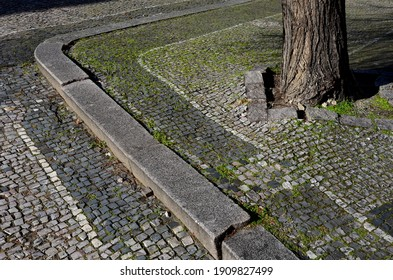 limestone black white mosaic old badly repaired with patches. The tree roots deform the surface and the grass overgrows each joint. the tiler must install upright curbs at once kerbside