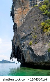 Limestone cliff of an islet of the Hong islands archipelago in the Phang Nga Bay