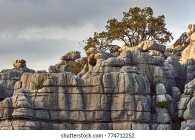 Limestone formations in the Torcal of Antequera. Antequera, Malaga. Spain