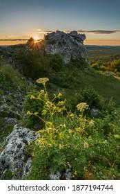 Góra Zborów, Limestone rock formation at sunset - Shutterstock ID 1877194744