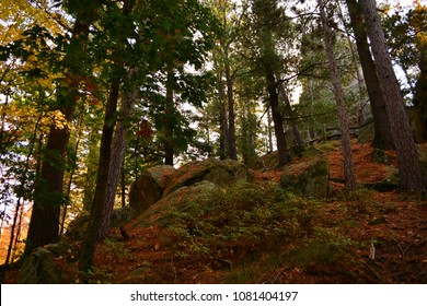 Limestone rock outcropping hidden by the Wisconsin forest on a warm fall day. The red and brown leaves cover the forest floor.  Large limestone and boulders point the way.