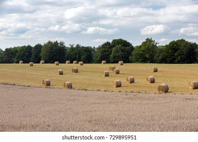 LIMOUSINE, FRANCE - JULY 5, 2017: Farmland with Wheat fields in the foreground and freshly harvested bales of Hay in the background.