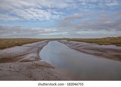 Lincolnshire salt marshes neer Tetney