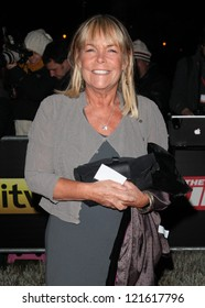 Linda Dobson arriving for The Sun Military Awards, at The Imperial War Museum, London. 06/12/2012 Picture by: Alexandra Glen