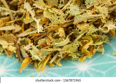 linden blossom detail, healthy herbs naturopathy