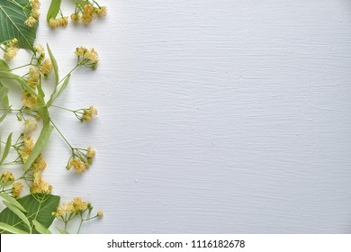 linden flowers on a wooden white background top view, floral background