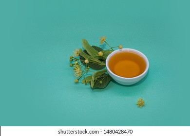 Linden honey in a white ceramic plate on tirquoise background with fresh linden blossom. Space for a text.