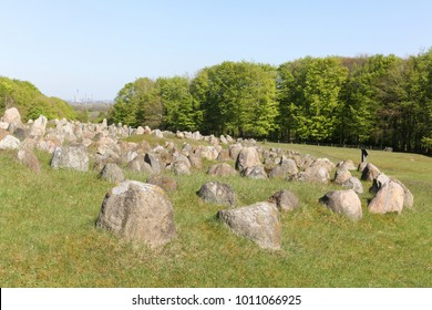 Lindholm Hills called Lindholm Hoje in Danish is a major viking burial site in Denmark