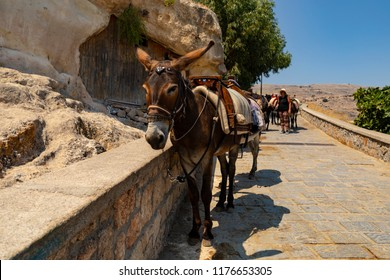 Lindos, Greece - August 5, 2018: To get to the top of the acropolis of Lindos in Rhodes, Greece, you can ride a donkey.