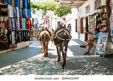 Lindos, Greece - June 2021: Donkeys on the streets of Lindos on the island of Rhodes.