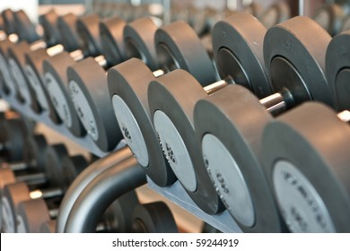 Line of barbells - fitness centre