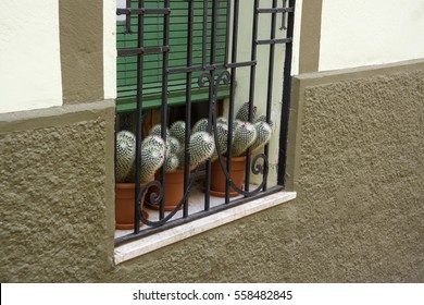 Royalty Free Window Grill Images Stock Photos Vectors Shutterstock