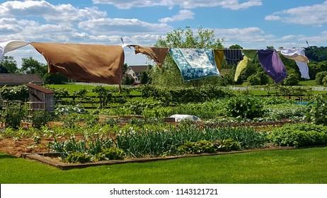 Line drying over the garden