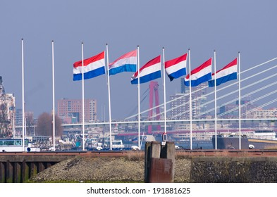 line of dutch flags blowing in the wind