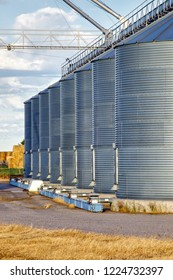 A line of granaries for storing wheat and other cereal grains.  It is located next to a railroad siding for easy loading and unloading.