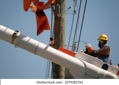 A line man Replaces damaged insulators in the aftermath of hurricane Irma. 4-16-2018 Spring Hill Florida USA
