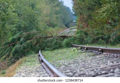 Line for a railroad near Fayetteville North Carolina blocked by trees from Hurricane Florence