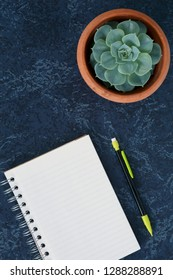 Lined notepad, pencil, and plant on marbled blue backgroud shot from overhead in vertical format