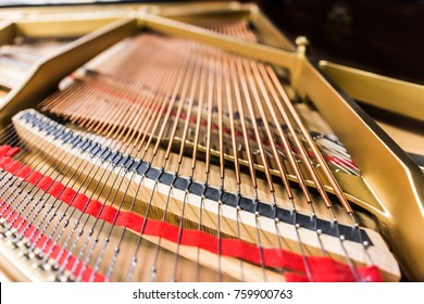 Lines of coiled bass strings inside grand piano