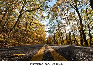 Lines in the middle of the road during Fall.