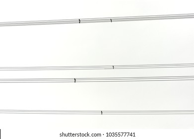 lines of power cables