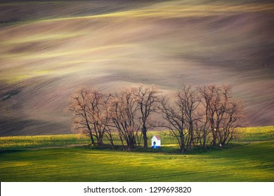 Lines and waves with trees and chapel in the spring in area known as Moravian Tuscany, South Moravia, Czech Republic