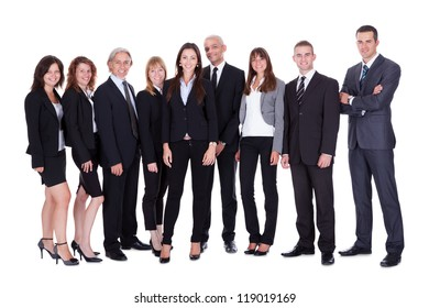Lineup of diverse professional business executives or partners standing relaxed in a row isolated on white