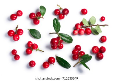 Lingonberry (fruits of Vaccinium vitis-idaea), top view. Clipping paths, shadow separated. Layers: goo.gl/kqAV4x