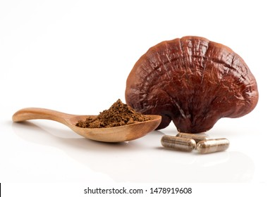 Lingzhi mushroom, Reishi mushroom, fruity body ,powder and capsule on a white background.