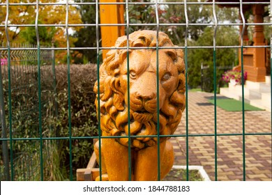 Lion behind fence. Wooden sculpture after rain