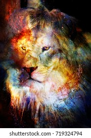 Lion in the cosmic space. Lion photos and graphic effect.