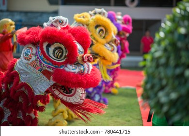 Lion dance in the Chinese New Year.