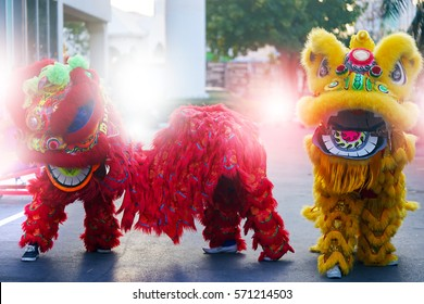Lion dance costume show during ceremony of Chinese new year celebration