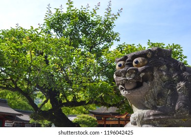 Lion dog shinto shrine Dazaifu