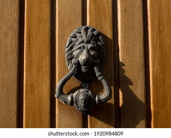 lion doorknob on wood door
