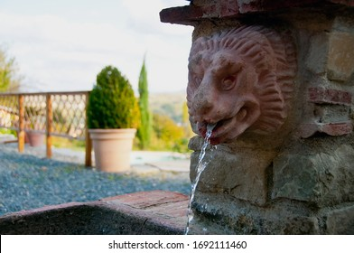 Lion head fountain with fresh water flowing with plants and trees on the background of the garden. Ovada Italy october 10th 2017