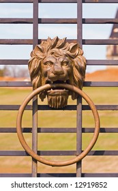 Lion Head Gate Handle