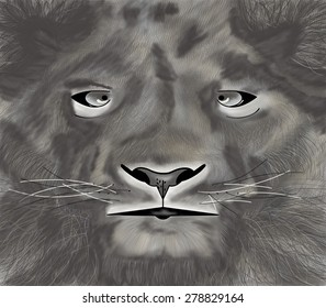 Lion head pencil drawing