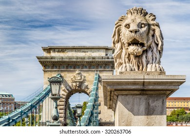 Lion on Chain Bridge on the Danube River in Budapest, Hungary